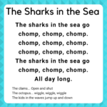 beach ocean storytime ideas the sharks in the sea